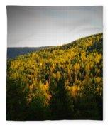 Vignette Of Autumn Gold  Fleece Blanket