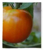 Vine Ripe Tomato Fleece Blanket