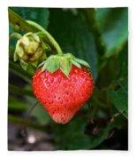 Vine Ripened Strawberry Fleece Blanket