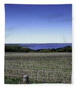 Vineyard Of Leelanau Michigan Fleece Blanket