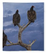Vultures Perched On A Branch No.0022 Fleece Blanket