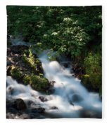 Wahkeena Falls Fleece Blanket