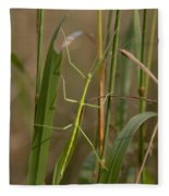 Walking Stick Insect Fleece Blanket