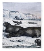 Walruses On Ice Field Fleece Blanket