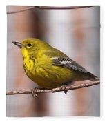 Warbler - Pine Warbler - Oh So Yellow Fleece Blanket