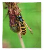 Wasp On Plant Fleece Blanket