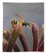 Waspage In The Kangaroo Paw Fleece Blanket