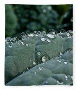 Water Beads Fleece Blanket