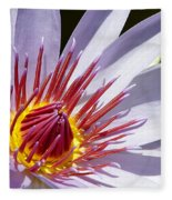 Water Lily Soaking Up The Sun Light Fleece Blanket