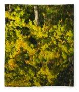 Water Reflection Abstract Autumn 1 G Fleece Blanket