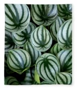 Watermelon Leaves Fleece Blanket