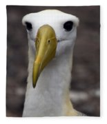 Waved Albatross Portrait Fleece Blanket