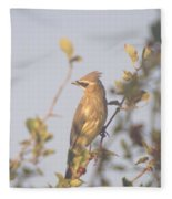 Wax Wing In Sunshine  Fleece Blanket