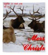 We All Got Together Christmas Fleece Blanket