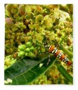 Webworm Moth Fleece Blanket