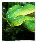West Amazonian Emerald Tree Boa Fleece Blanket