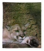 What A Paw Fleece Blanket