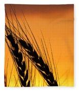Wheat At Sunset Fleece Blanket