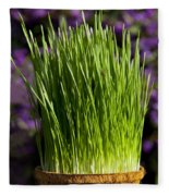 Wheat Grass Fleece Blanket