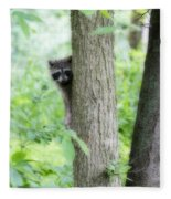 When Raccoon Dream Fleece Blanket
