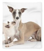 Whippet And Siamese Kitten Fleece Blanket