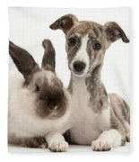 Whippet Pup With Colorpoint Rabbit Fleece Blanket