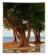 Whispering Trees Of Sanibel Fleece Blanket