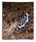 White-banded Black Moth Fleece Blanket
