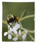 White Crownbeard Wildflowers Pollinated By A Bumble Bee With His Bags Packed Fleece Blanket