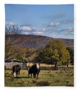 White Faced Cattle In Autumn Fleece Blanket