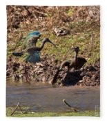 White-faced Ibis Mating Behavior In Early Spring Fleece Blanket