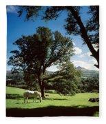 White Horse At Powerscourt, Co Wicklow Fleece Blanket