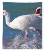 White Ibis On The Shore Fleece Blanket