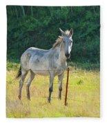 White Mule No.5007 Fleece Blanket