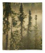 White Spruce In Mist At Sunrise Fleece Blanket