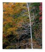White Tree Fall Colors  Fleece Blanket