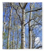 White Trees Against A Blue Sky Fleece Blanket