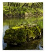 Whitewater River Spring 12 Fleece Blanket