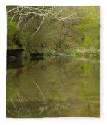Whitewater River Spring 13 Fleece Blanket