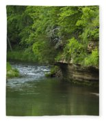 Whitewater River Spring 5 B Fleece Blanket