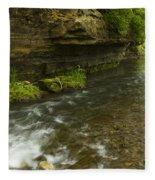 Whitewater River Spring 6 Fleece Blanket