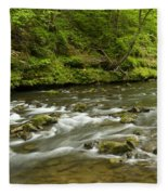 Whitewater River Spring 8 A Fleece Blanket