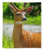 Wild Deer Fleece Blanket