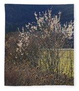Wild Fruit Tree In The Country Fleece Blanket