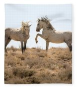 Wild Horse Disagreement  Fleece Blanket