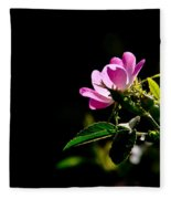 Wild Rose Along Galls Creek Fleece Blanket