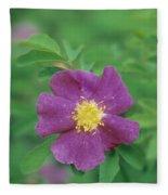 Wild Rose Fleece Blanket