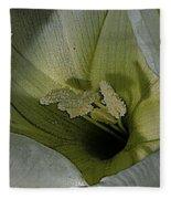Wildflower Window Fleece Blanket