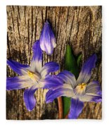 Wildflowers On Wood Fleece Blanket