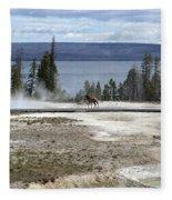 Wildlife In Yellowstone Fleece Blanket